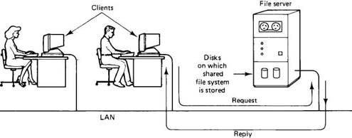Examples of a network operating system.